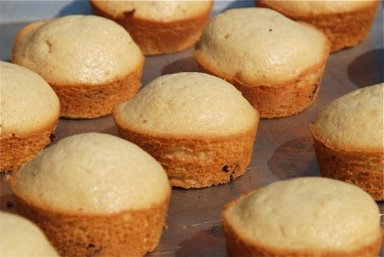 Stylish cuisine mini maple pancake muffins my ccuart Image collections